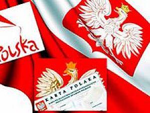 Чем полезны курсы польского языка?