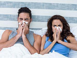 Особенности гипоаллергенной подушки.