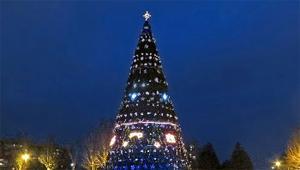 В Запорожье открыли главную городскую елку