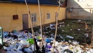"""У центрі Ужгорода """"виросло"""" стихійне сміттєзвалище"""