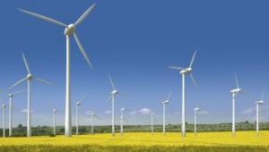 В Запорожской области появится новая ветроэлектростанция