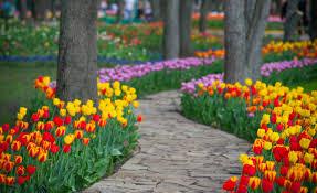 Куда отправиться на майские праздники