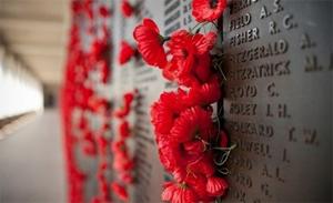 Красный мак – символ памяти в Украине
