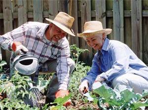 Дача – это отличный способ выращивать продовольствие